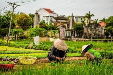 villaggio di verdura di Tra Que