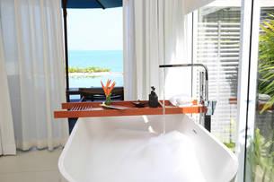 Celes Bathroom view