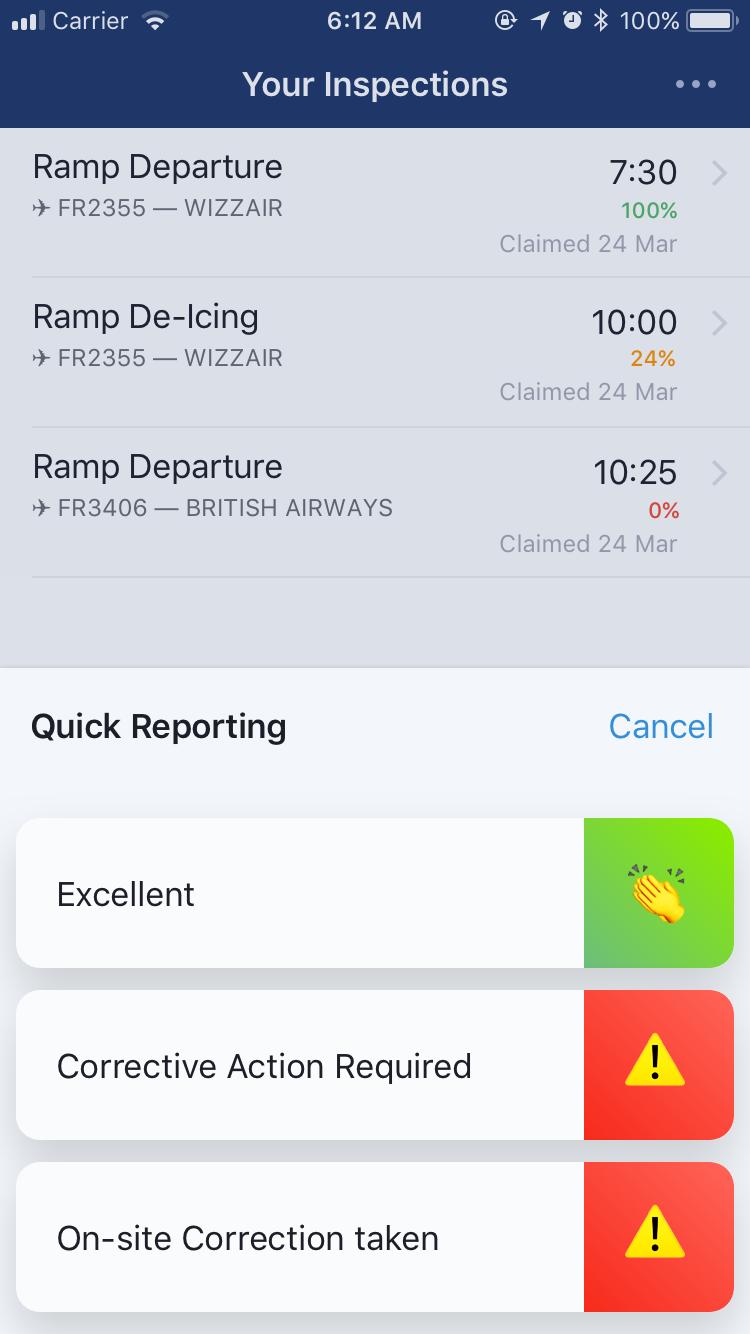 Mobile Audit App Development
