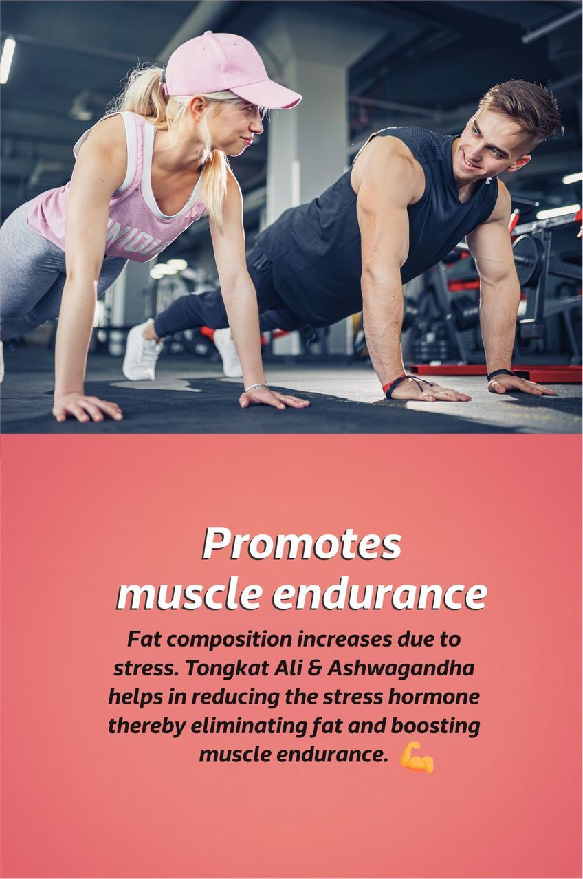 Improves muscle endurance