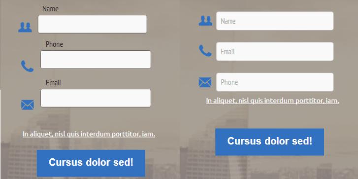 formularz landing page