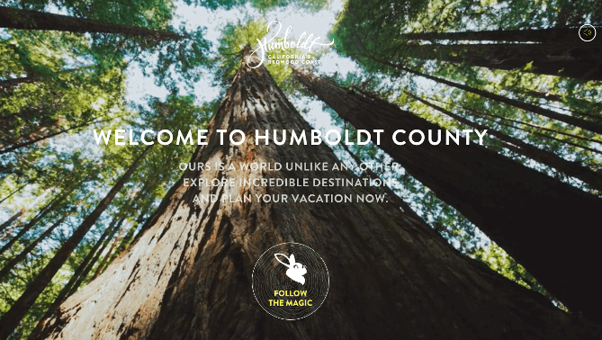 landing-pages-and-high-converting-copy-humboldt-county