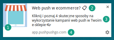 4-elementy-web-push