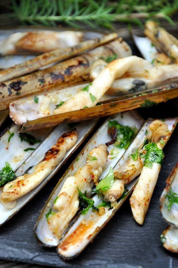 razor clams in Koh Samui