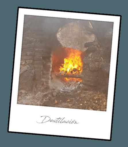 Destilación Mezcal Antifaz