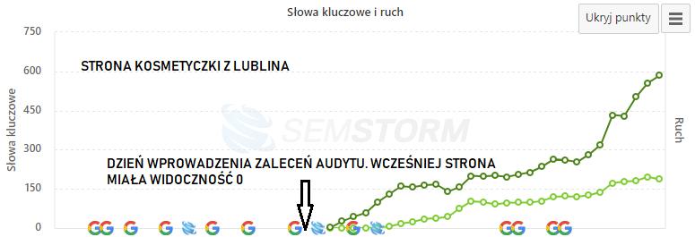 audyt strony internetowej kosmetyczki Lublin